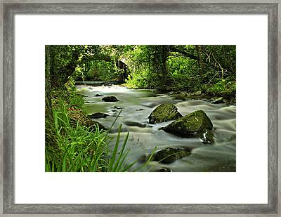 Free Flow Framed Print