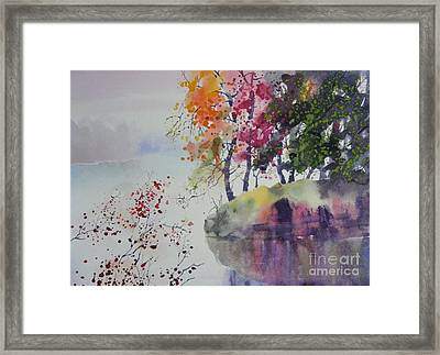 Free Look Framed Print