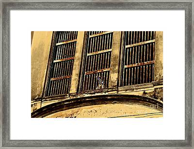Freedom Framed Print by Dean Harte