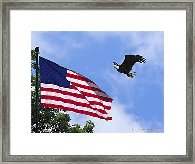 Framed Print featuring the photograph Freedom Feeds The Family by Randall Branham