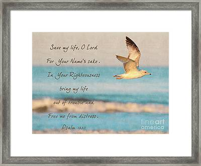 Freedom Flight Framed Print by Constance Woods
