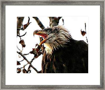 Framed Print featuring the digital art Freedom Is Not Free by Carrie OBrien Sibley