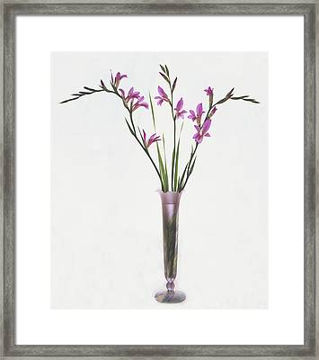Freesias In Vase Framed Print