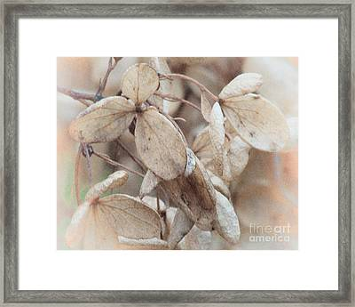 Freeze Dried Framed Print by Arne Hansen