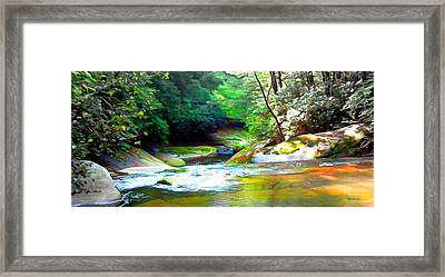 French Broad River Filtered Framed Print