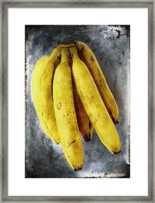 Fresh Bananas Framed Print by Skip Nall