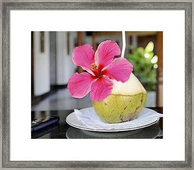 Fresh Coconut Milk Cocktail Framed Print by Kantilal Patel