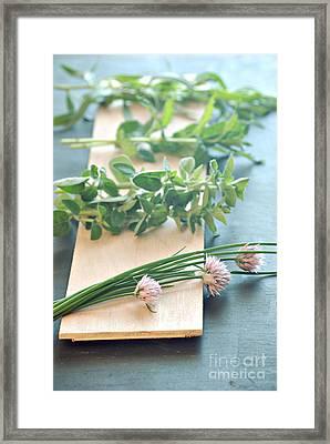 Fresh Herbs Framed Print