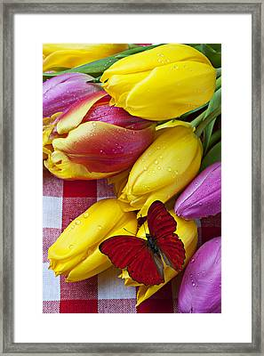 Fresh Tulips And Red Butterfly Framed Print by Garry Gay