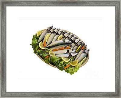 Fresh Uncoocked Fish Framed Print by Soultana Koleska