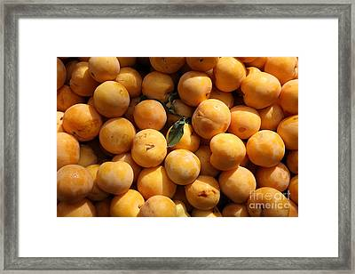 Fresh Yellow Plums - 5d17814 Framed Print by Wingsdomain Art and Photography