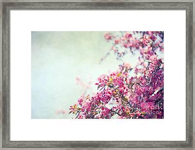 Friday Morning Framed Print by Violet Gray