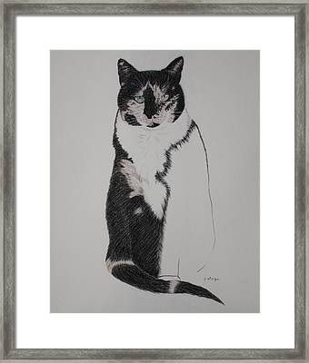 Friend II Framed Print by Patsy Sharpe
