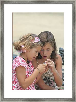Friends Framed Print by Michael Cinnamond