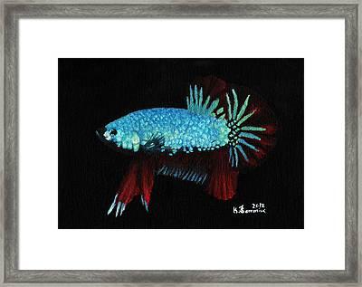 Frilled Blue Moonstone Framed Print by Kayleigh Semeniuk