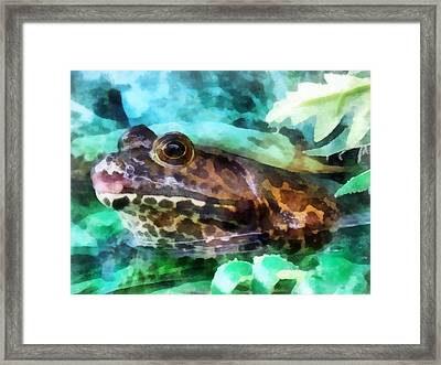 Frog Ready To Be Kissed Framed Print by Susan Savad