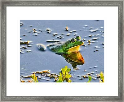 Frog Reflection Framed Print by Julio n Brenda JnB