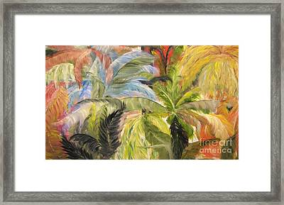 Frolicking Ferns Framed Print by Rachel Carmichael