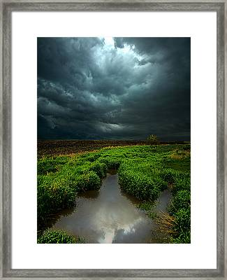 From Above Framed Print by Phil Koch