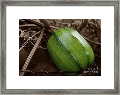 From Green To Orange Framed Print by Luke Moore