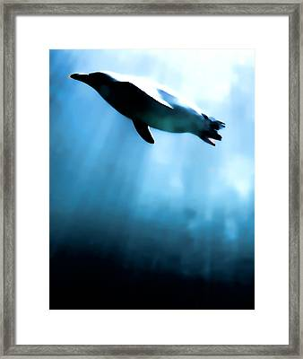 From The Depths Framed Print by Sharon Lisa Clarke