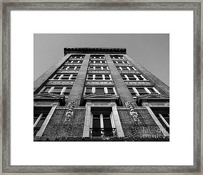 Front And Center  Framed Print by Tammy Cantrell