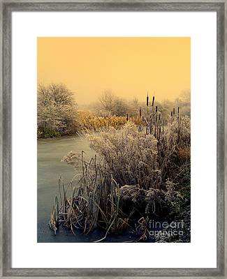 Frost Framed Print by Linsey Williams