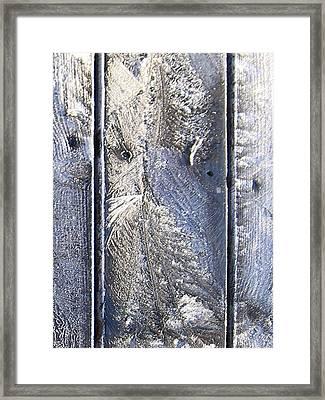 Frost Owl No01 Framed Print by Greta Thorsdottir