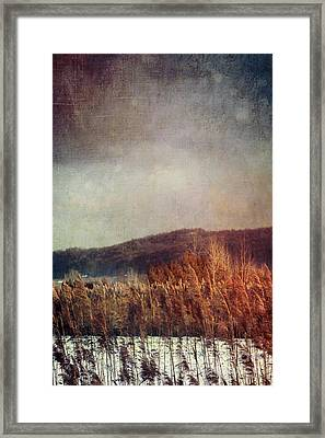Frosty Field In Late Winter Afternoon Framed Print by Sandra Cunningham