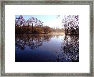 Frosty Morning Framed Print by Andrew Middleton