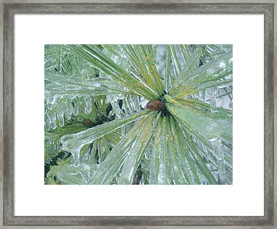 Frozen Assets Framed Print by Linda Pope