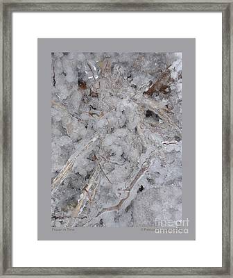 Framed Print featuring the photograph Frozen In Time by Patricia Overmoyer