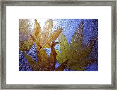 Framed Print featuring the photograph Frozen Leaves by Scott Holmes