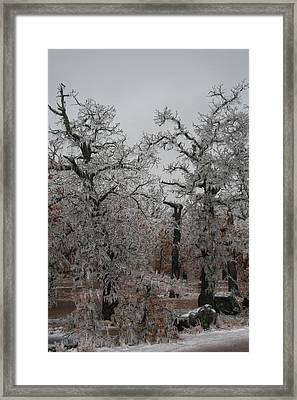 Frozen Over Framed Print by Jessica Jandayan