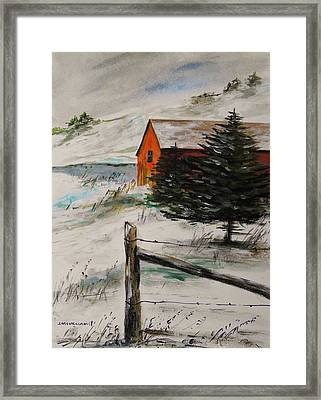 Frozen Pond Framed Print by John Williams