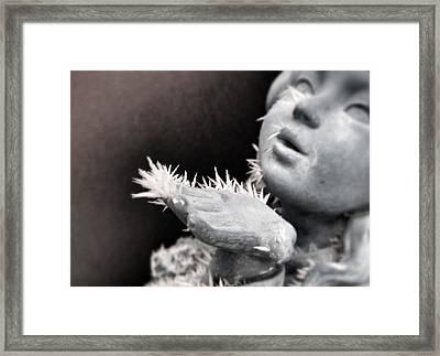 Frozen Wish Framed Print by Marianna Mills