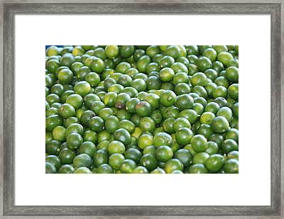 Fruit Bundle Framed Print