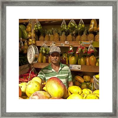 Fruit Market Stand Framed Print