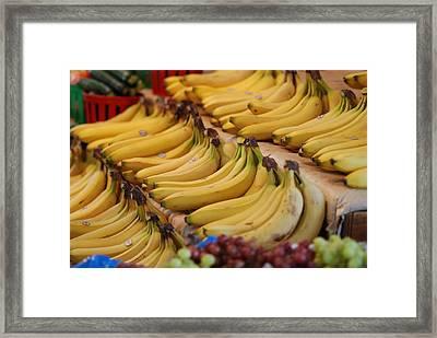 Fruit Of A Kind   Framed Print