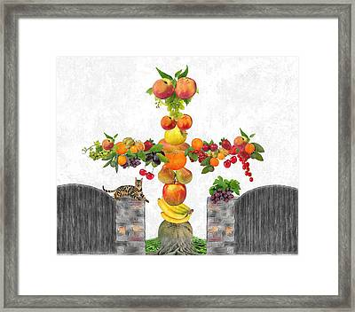 Fruit Tee Framed Print by Manfred Lutzius