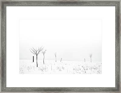 Fruit Trees Lost In Winter Fog Framed Print by Raphael Schneider