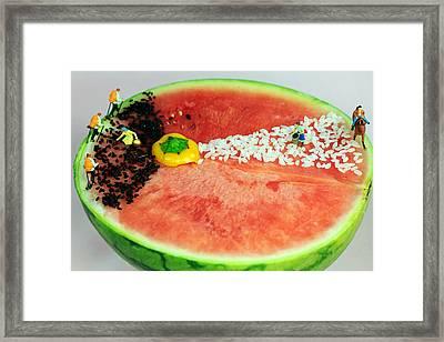 Fruits Depicting Kepler's Law Framed Print by Paul Ge