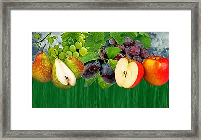 Fruits Framed Print by Manfred Lutzius