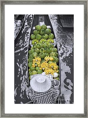 Fruits Framed Print by Roberto Morgenthaler