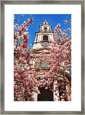 Full Bloom Framed Print by Shirley Mitchell