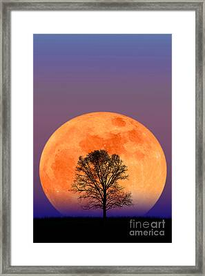 Full Moon Framed Print by Larry Landolfi and Photo Researchers