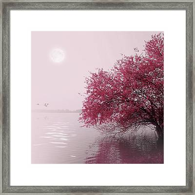 Full Moon On The Lake Framed Print