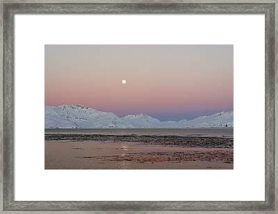 Full Moon, South Georgia Framed Print by Charlotte Main