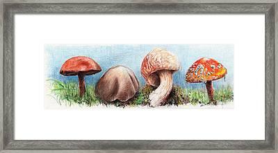 Fungus Panorama Framed Print