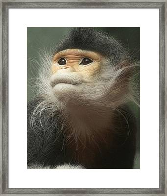 Framed Print featuring the photograph Funny by Cheri McEachin